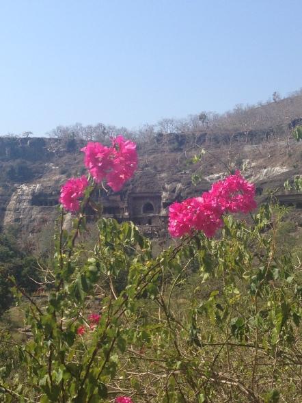 Ajanta flowers