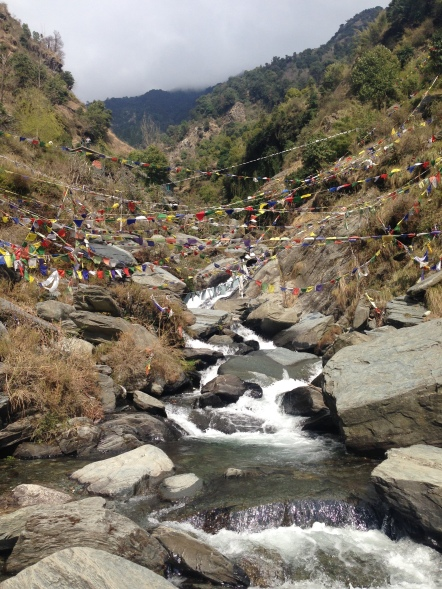 Dharamsala bhagsu waterfall