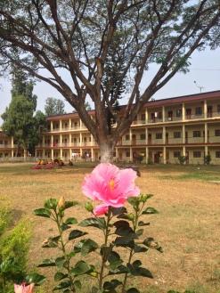Mysore flower monestary